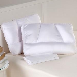 tony-little-micropedic-2-sleep-pillows-and-2-pillowcase-d-2006032415035198~677952