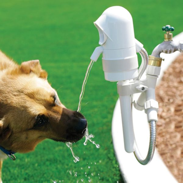 Outdoor fountain for pets