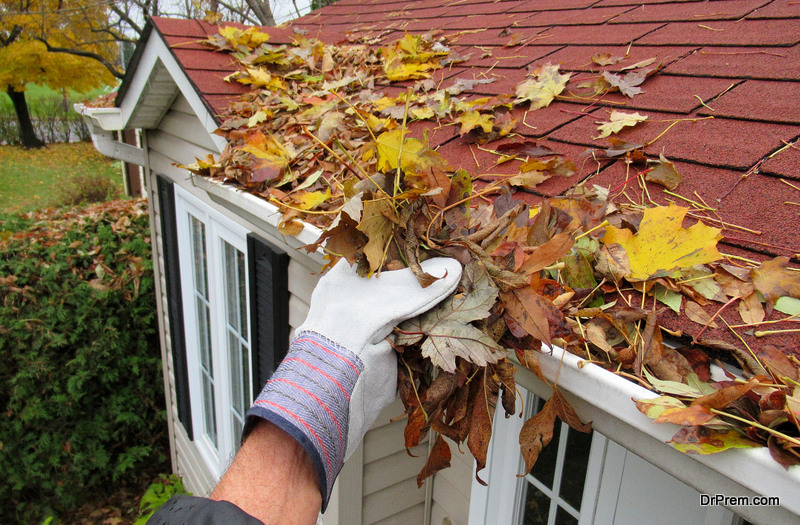 Cleaning-the-Gutters
